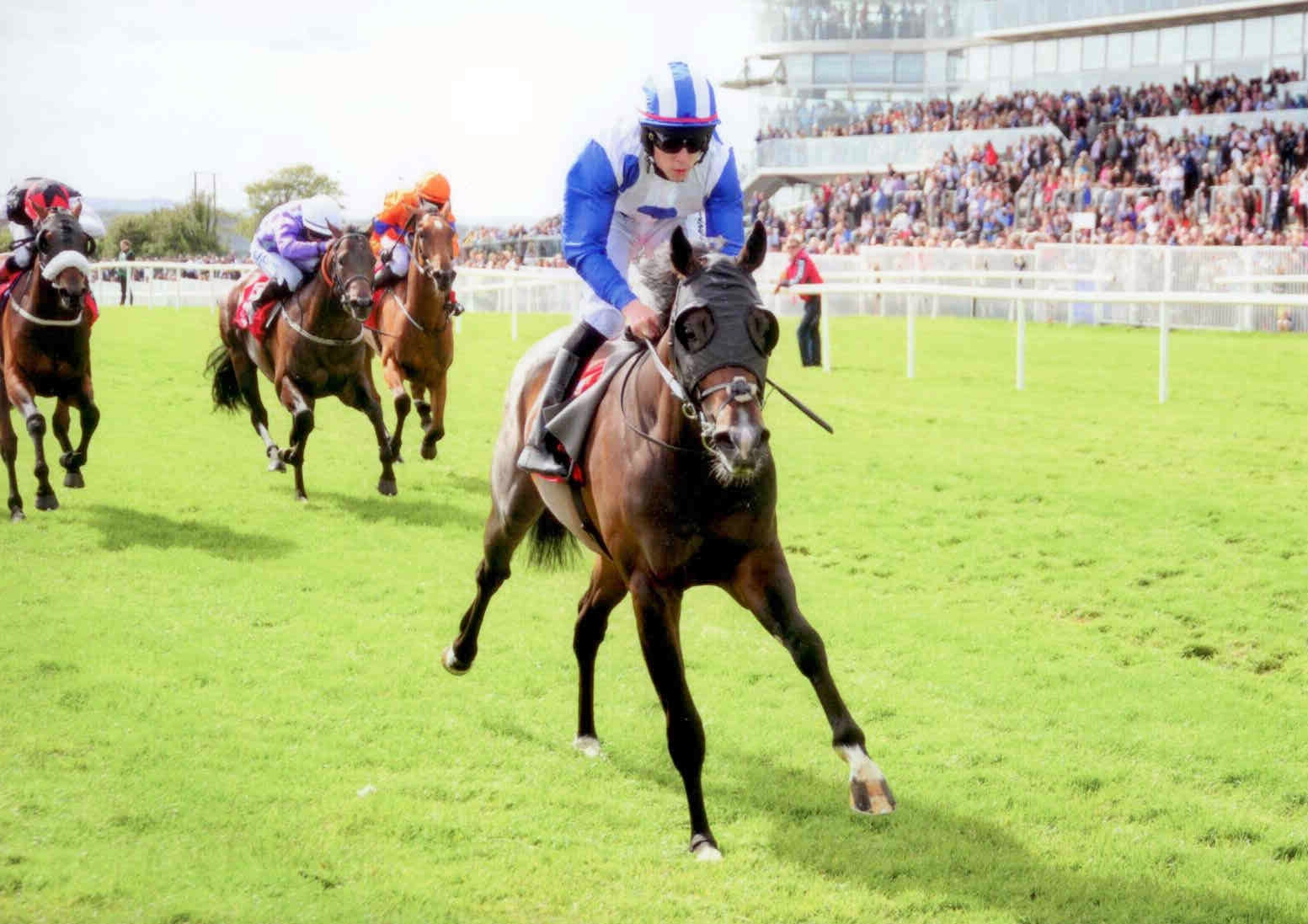 WAIPU COVE powers away at Galway under Leigh Roche