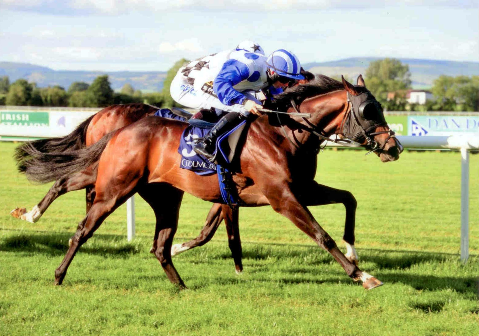 WAIPU COVE wins the Listed Coolmore Canford Cliffs Stakes in Tipperary 7th Aug 2015