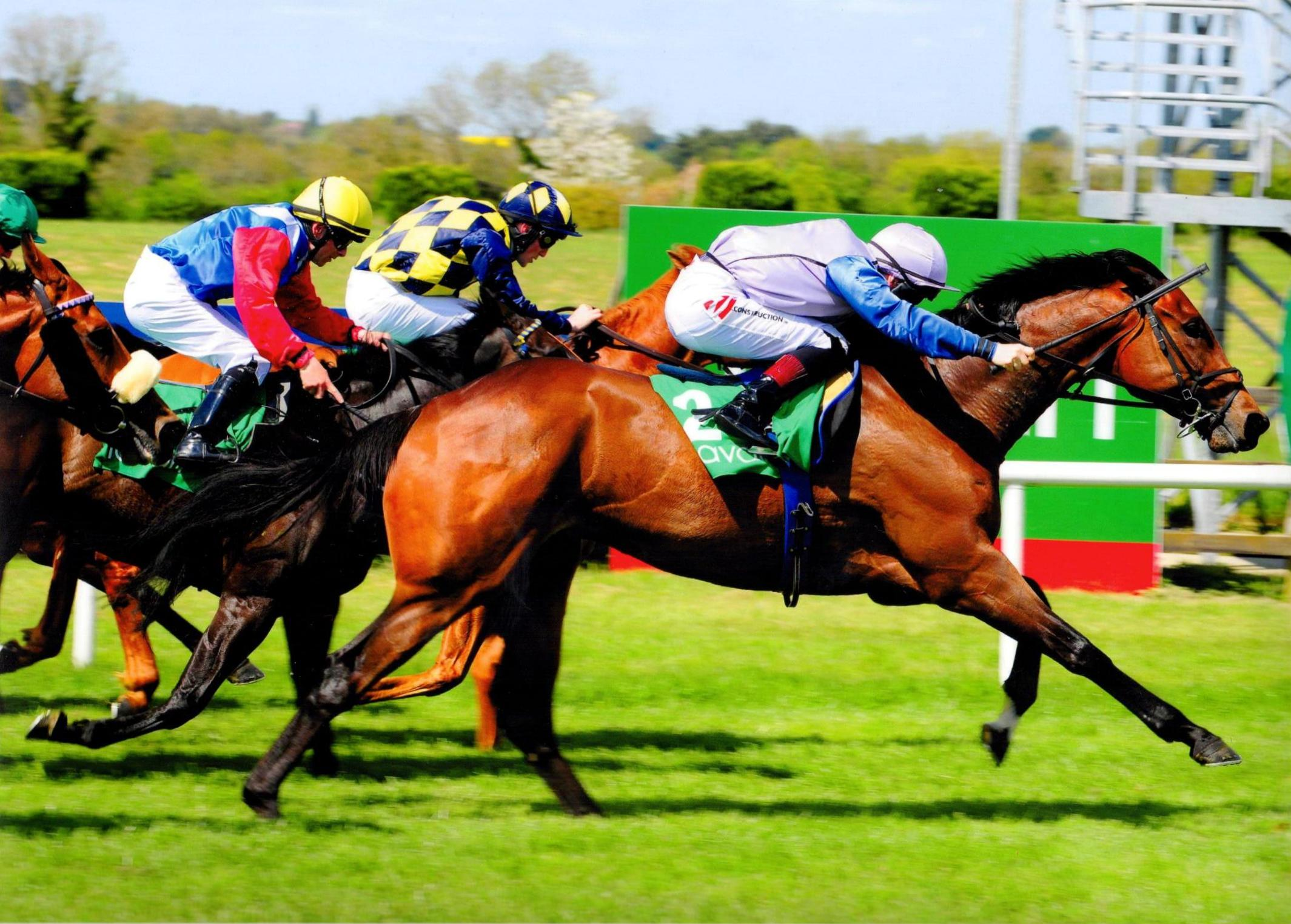 ARDHOOMEY makes it two from two for 2016 at Navan 15th May 2016