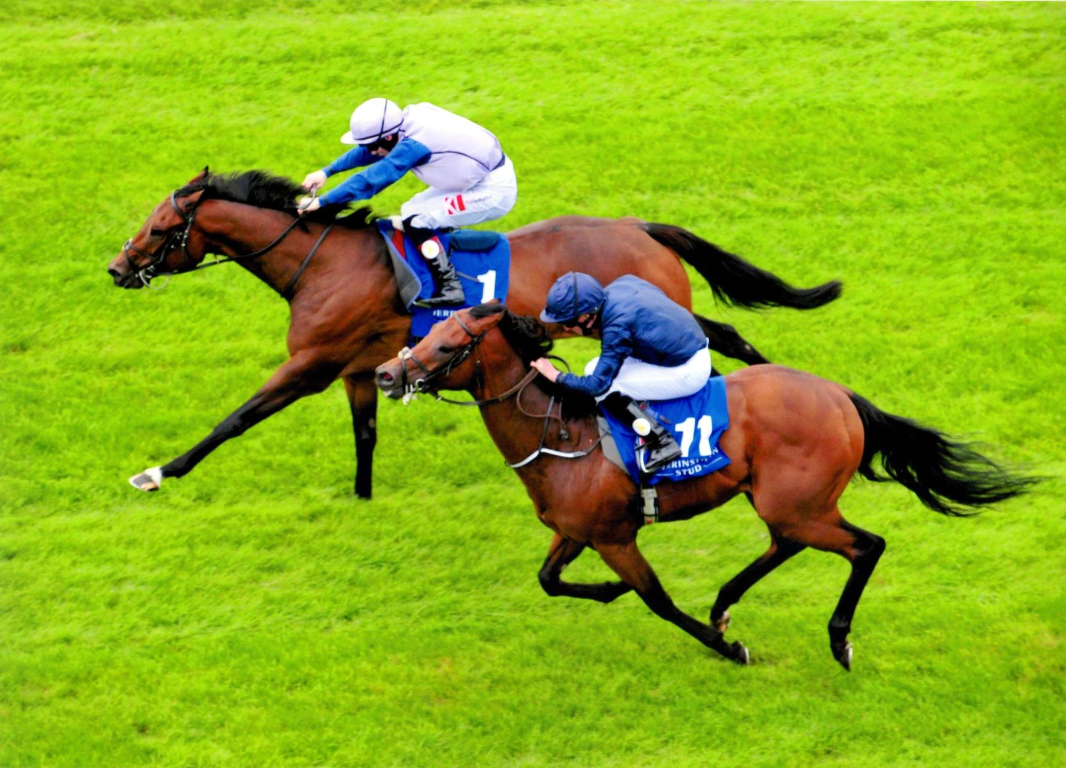ARDHOOMEY takes the Derrinstown Flying Five Gr 2 at The Curragh 11th September 2016