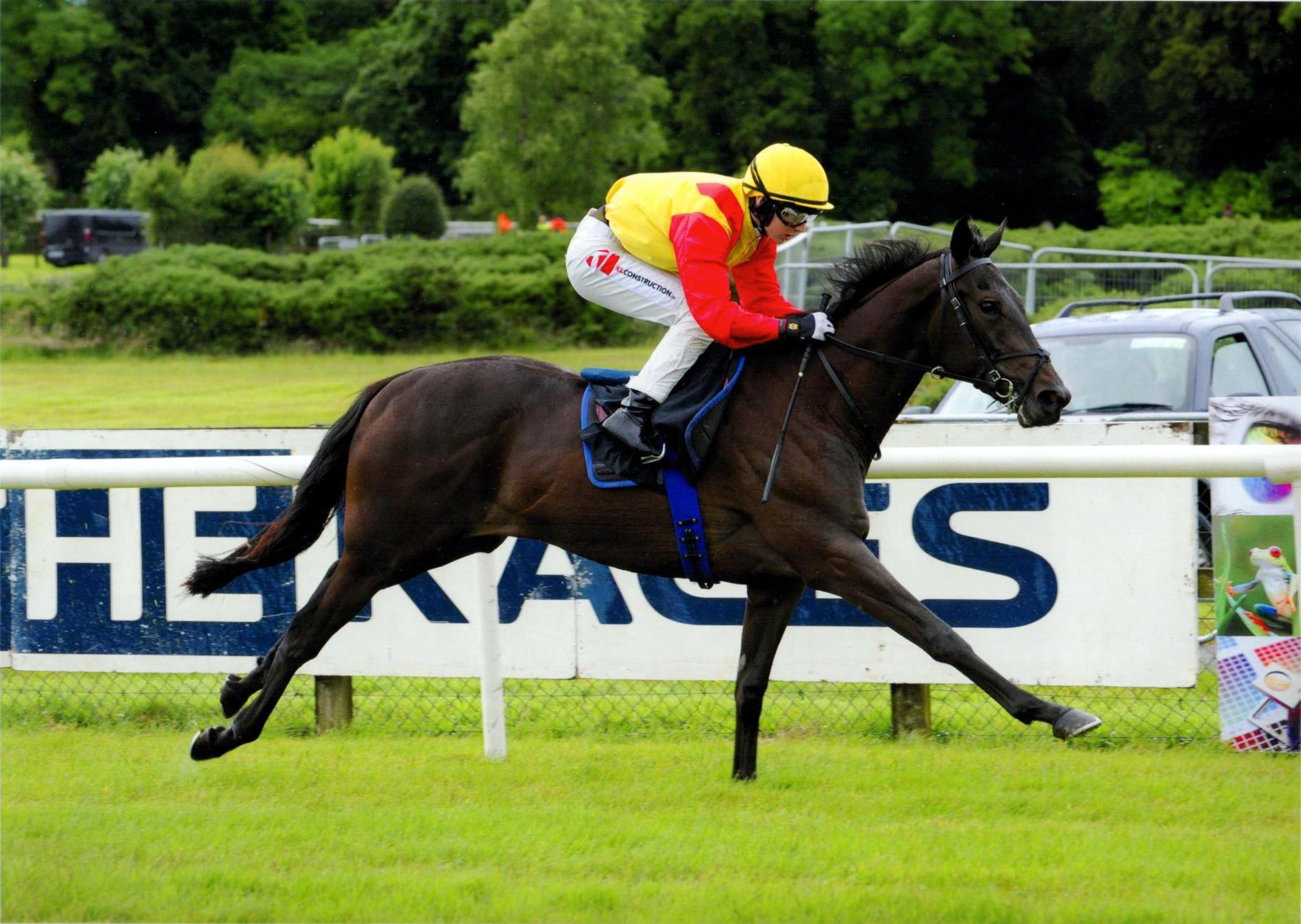 BOYFRIEND BRIAN wins impressively first time out at Bellewstown 1st July 2016