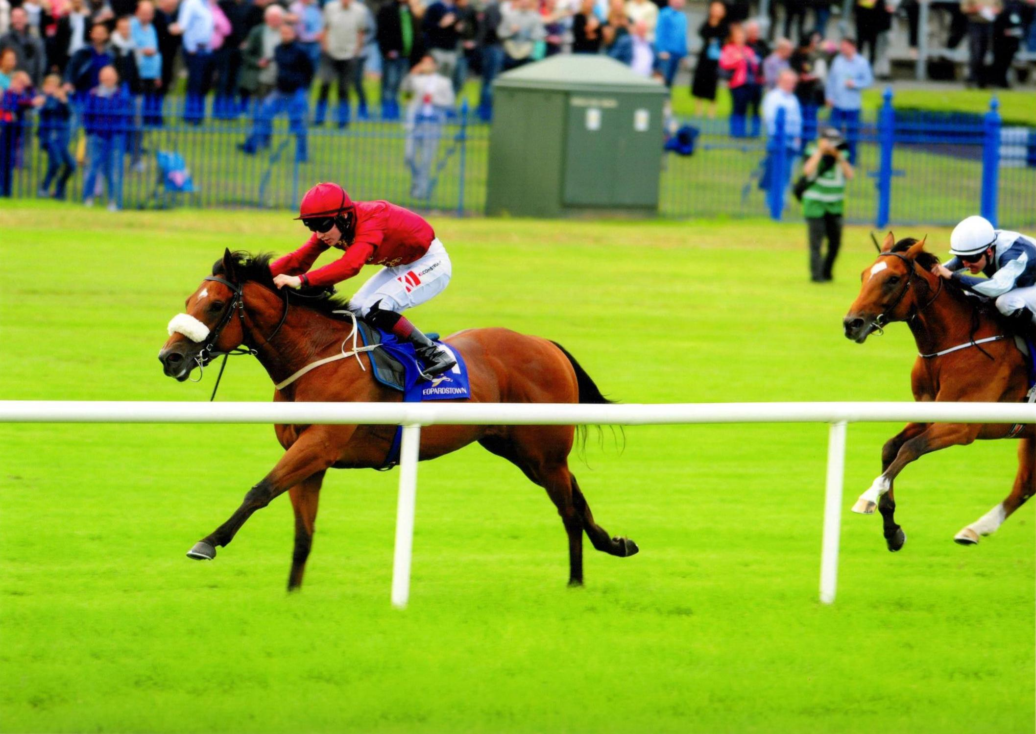 BRUTAL gets off the mark at Leopardstown 11th August 2016