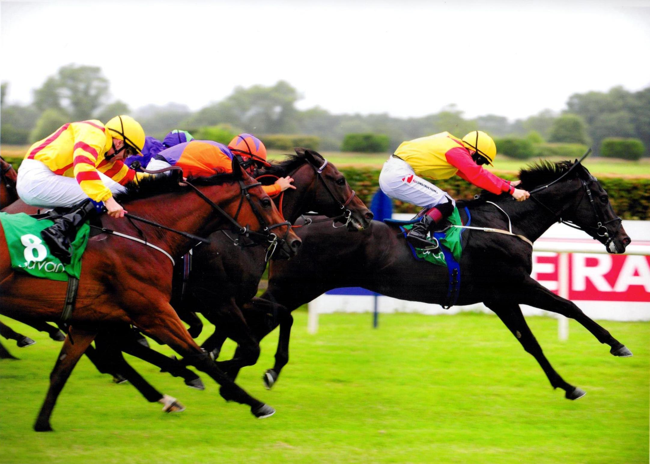ELUSIVE HEIGHTS lands his second victory of the season at Navan 8th July 2016