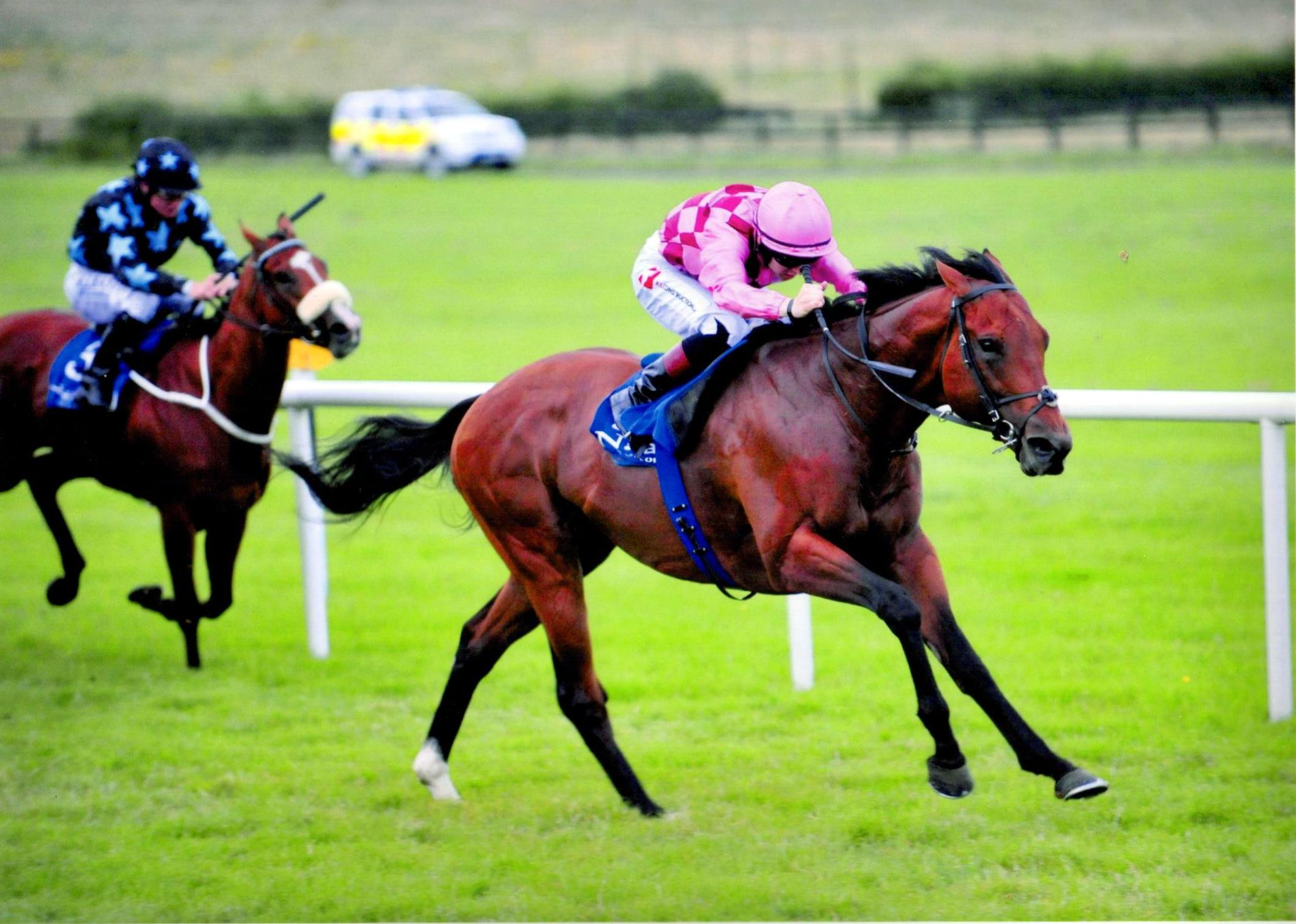 ENDLESS DRAMA impresses in winners race at Naas 13th July 2016