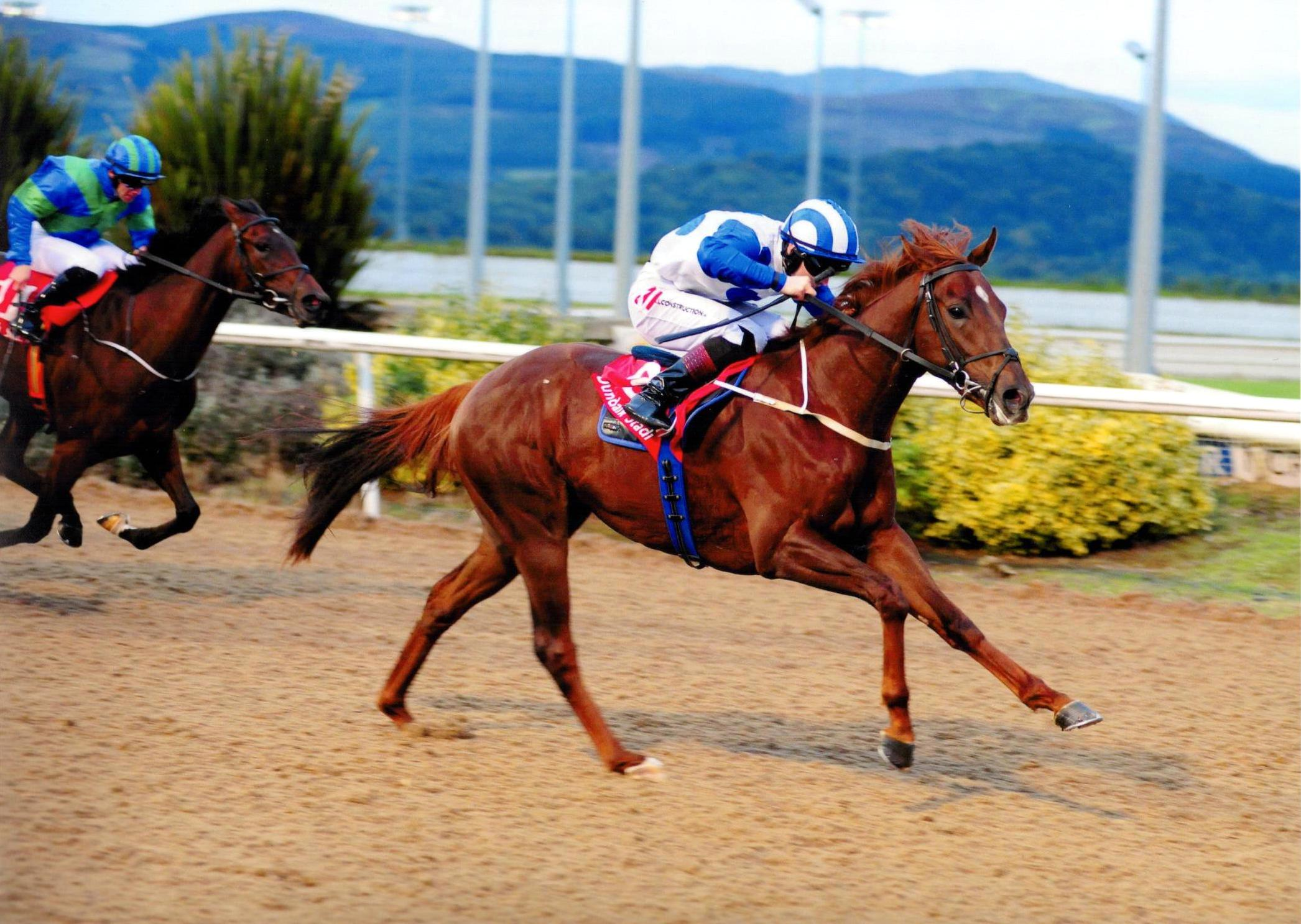 GLASTONBURY SONG brings up a double on the card at Dundalk 30th September 2016