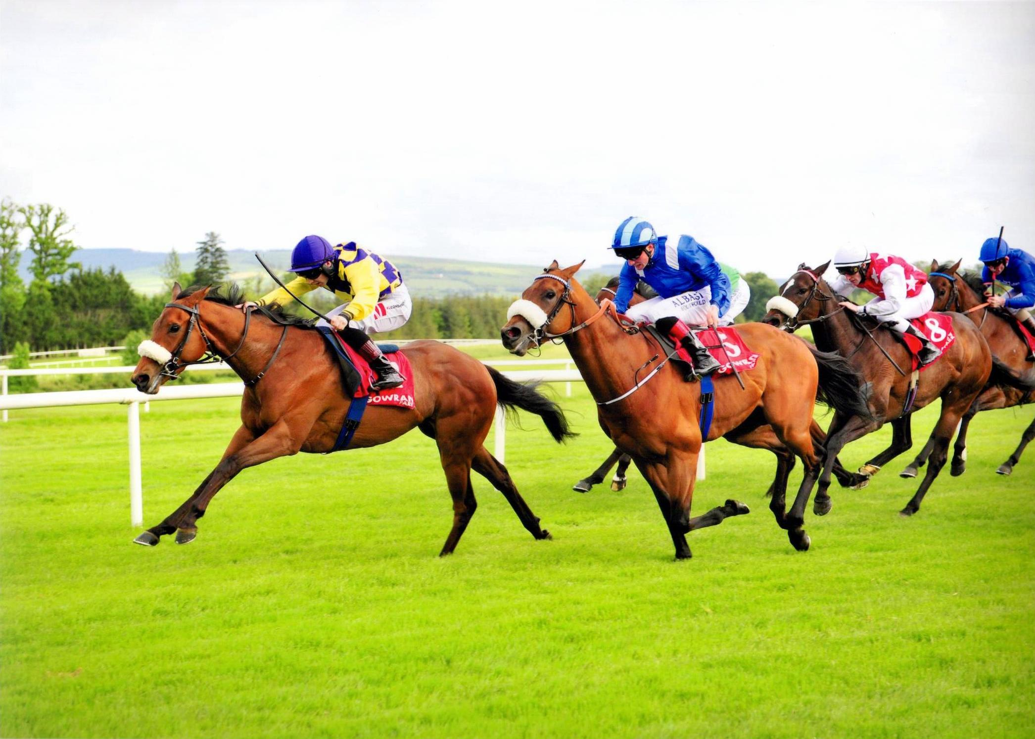 RECKLESS ENDEAVOUR scores in style at Gowran Park 25 May 2016