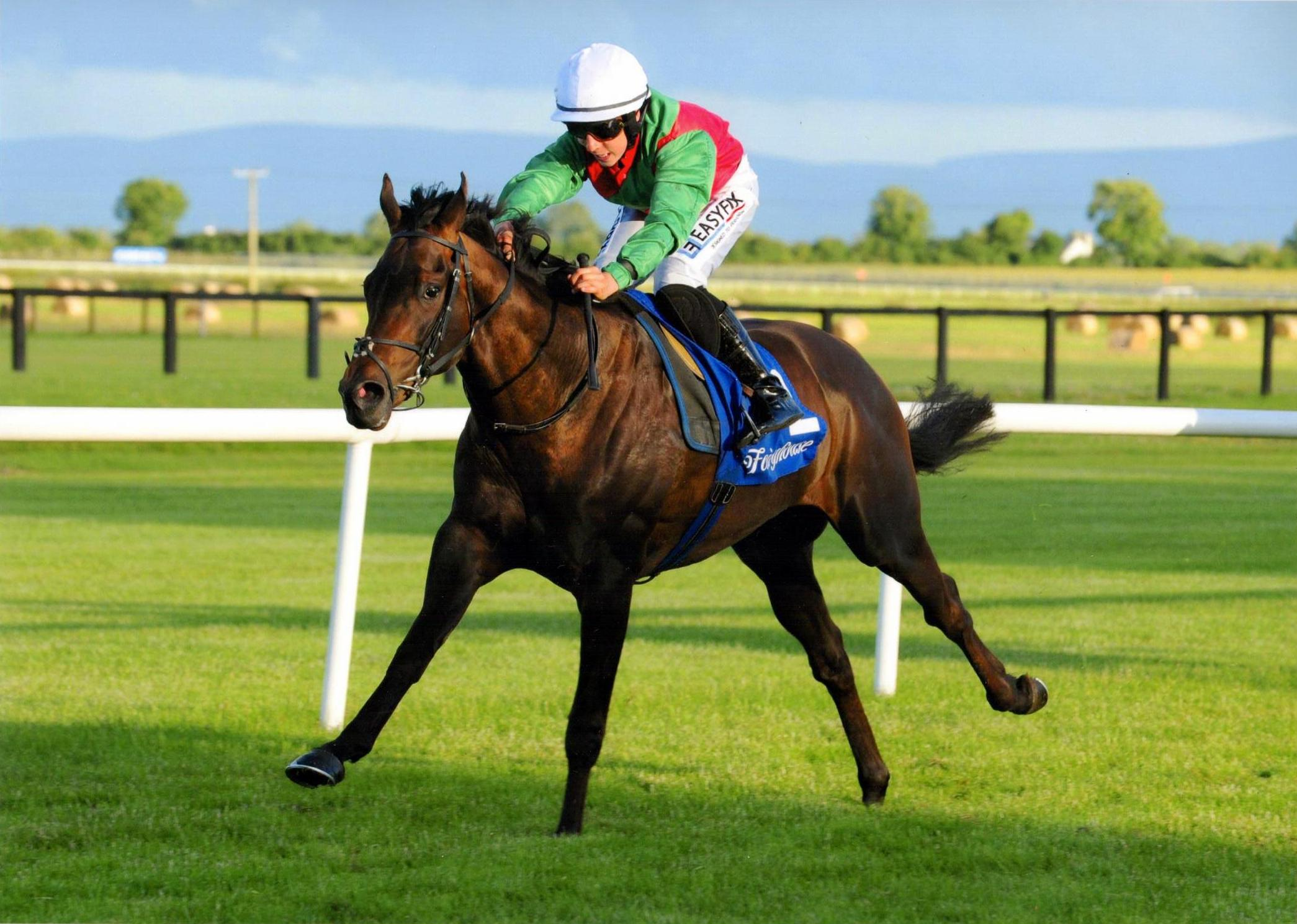 ROIBEARD provides Evan Daly with his first racecourse success at Fairyhouse 29th June 2016