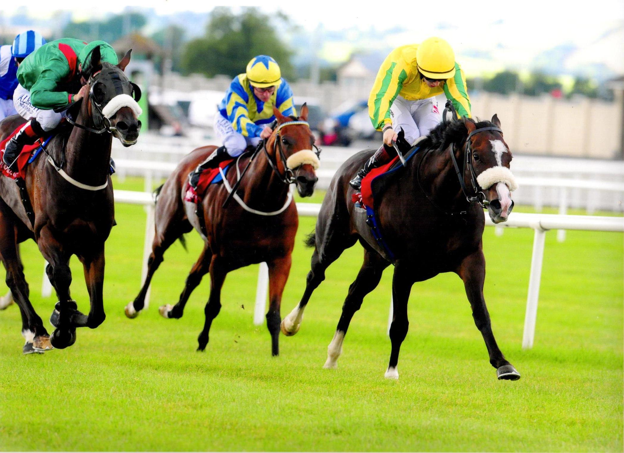 SEA WOLF stays on well to land the Tote Irish Cambridgeshire at The Curragh 28th August 2016