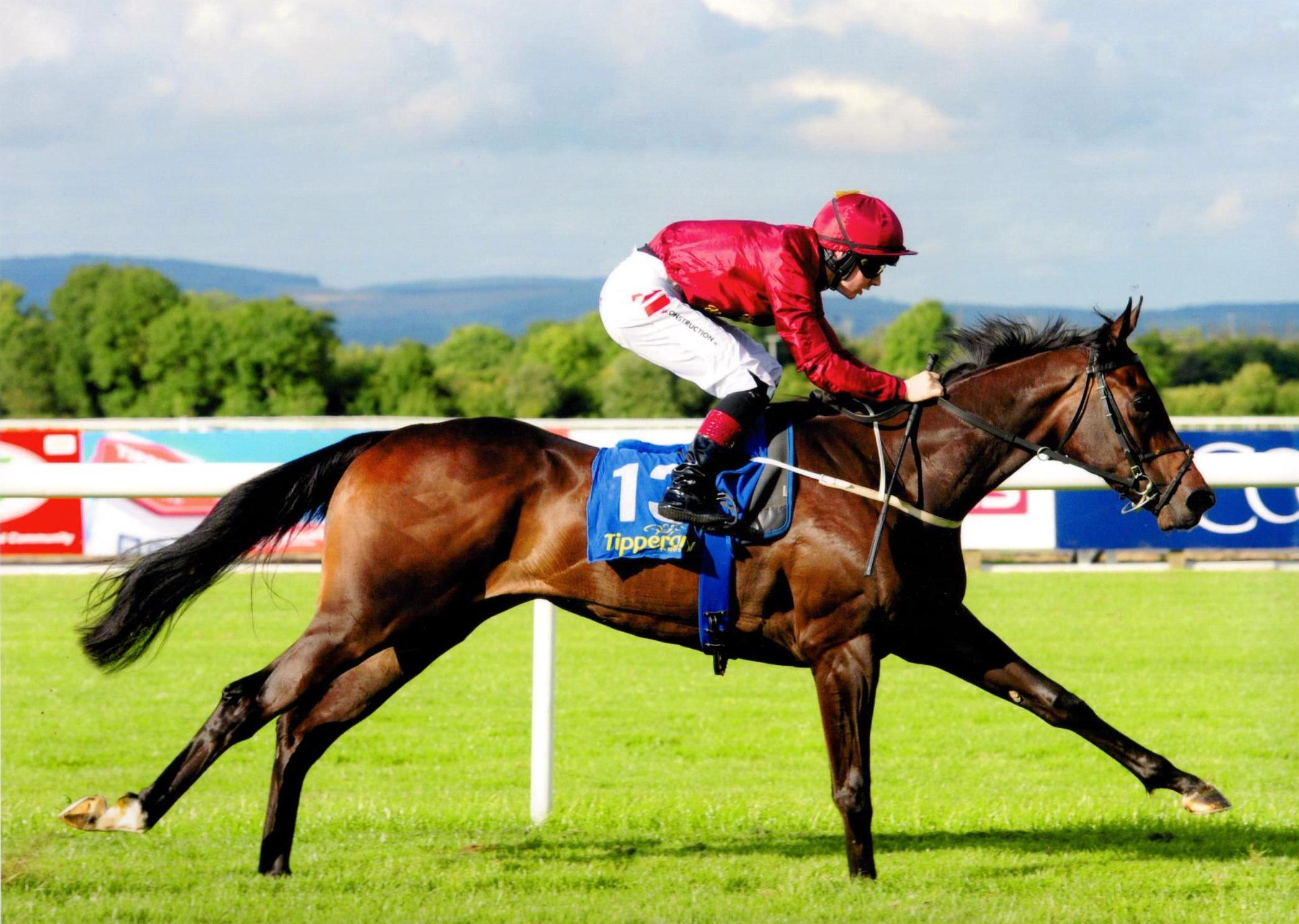 SWEET SOUNDS scores at Tipperary on debut 5th August 2016