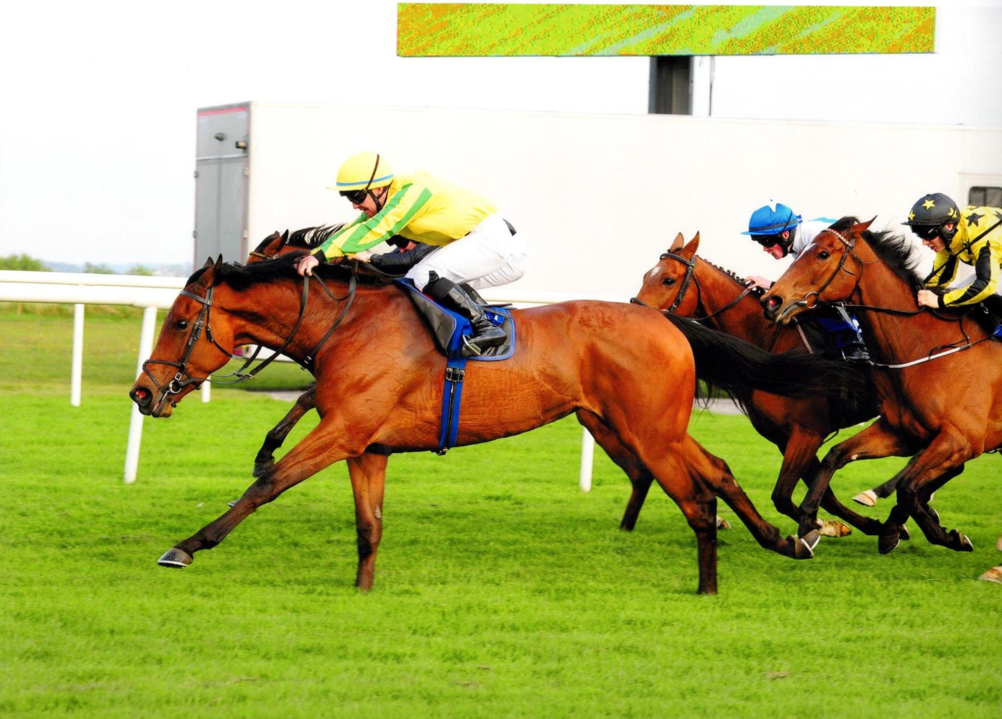 SYNOPSIS makes her trip to the west a winning one at Roscommon 09 May 2016