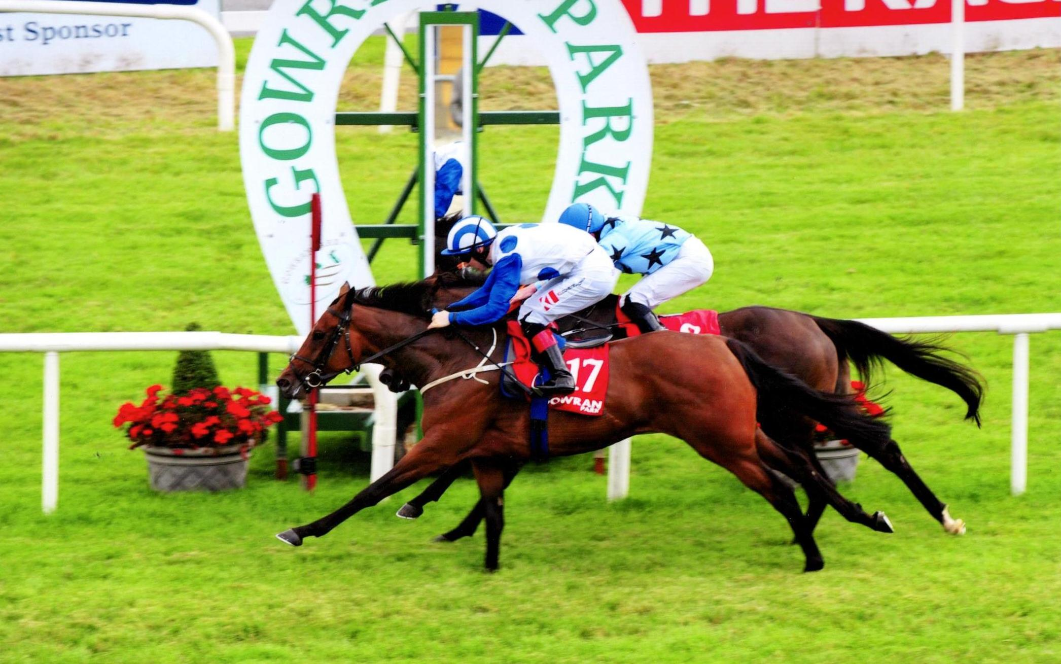 ALWAYS DANCING lands her second success of the week at Gowran 22nd July 2017