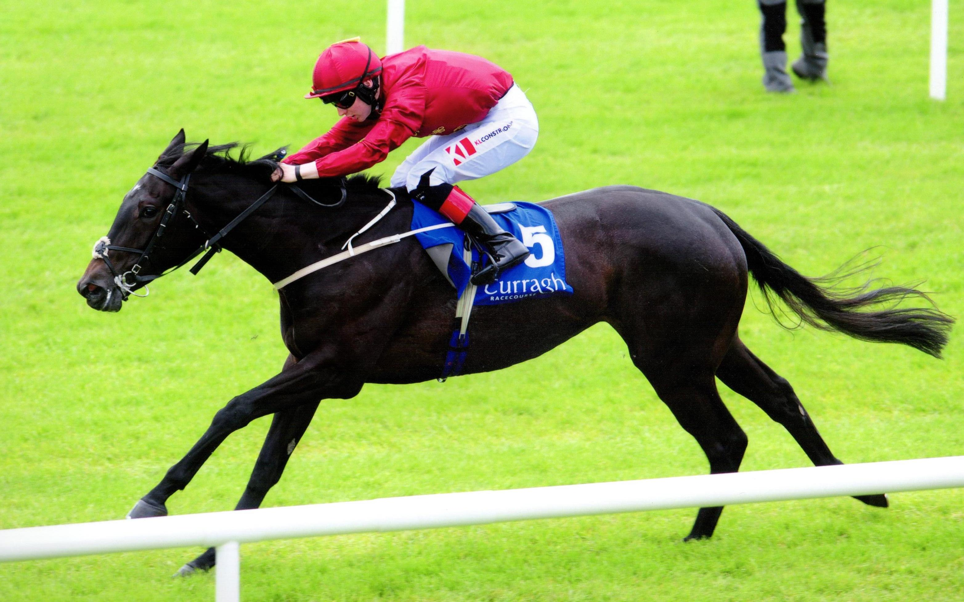 BLACK SAILS lands her maiden in fine style at The Curragh 20th May 2017