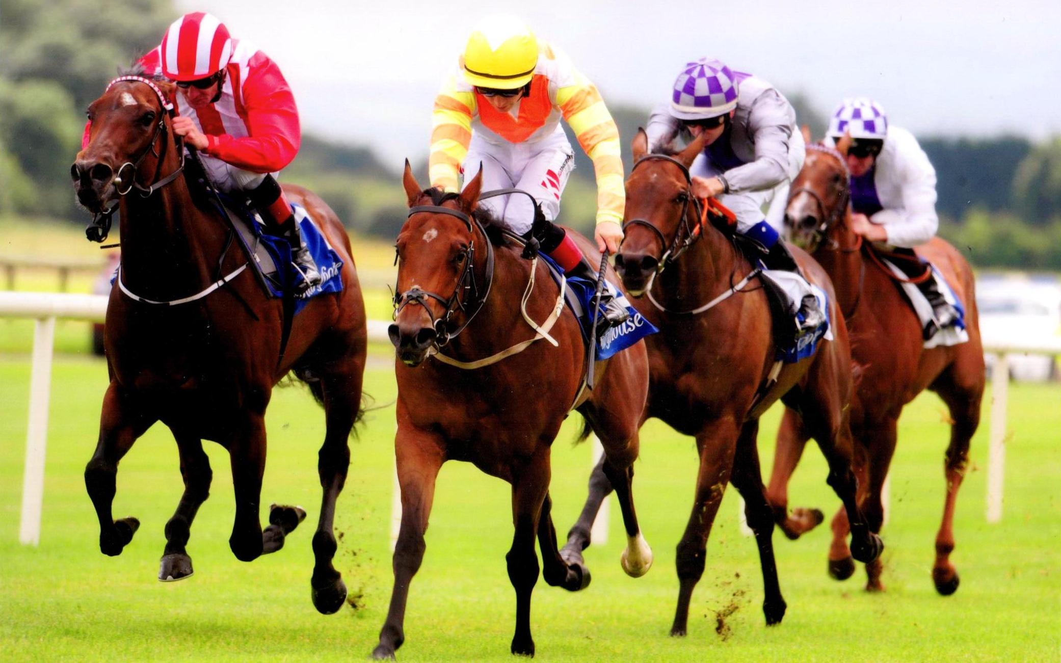 BLUE ULURU lands her maiden for owner Nicholas Varney at Fairyhouse 23rd July 2017