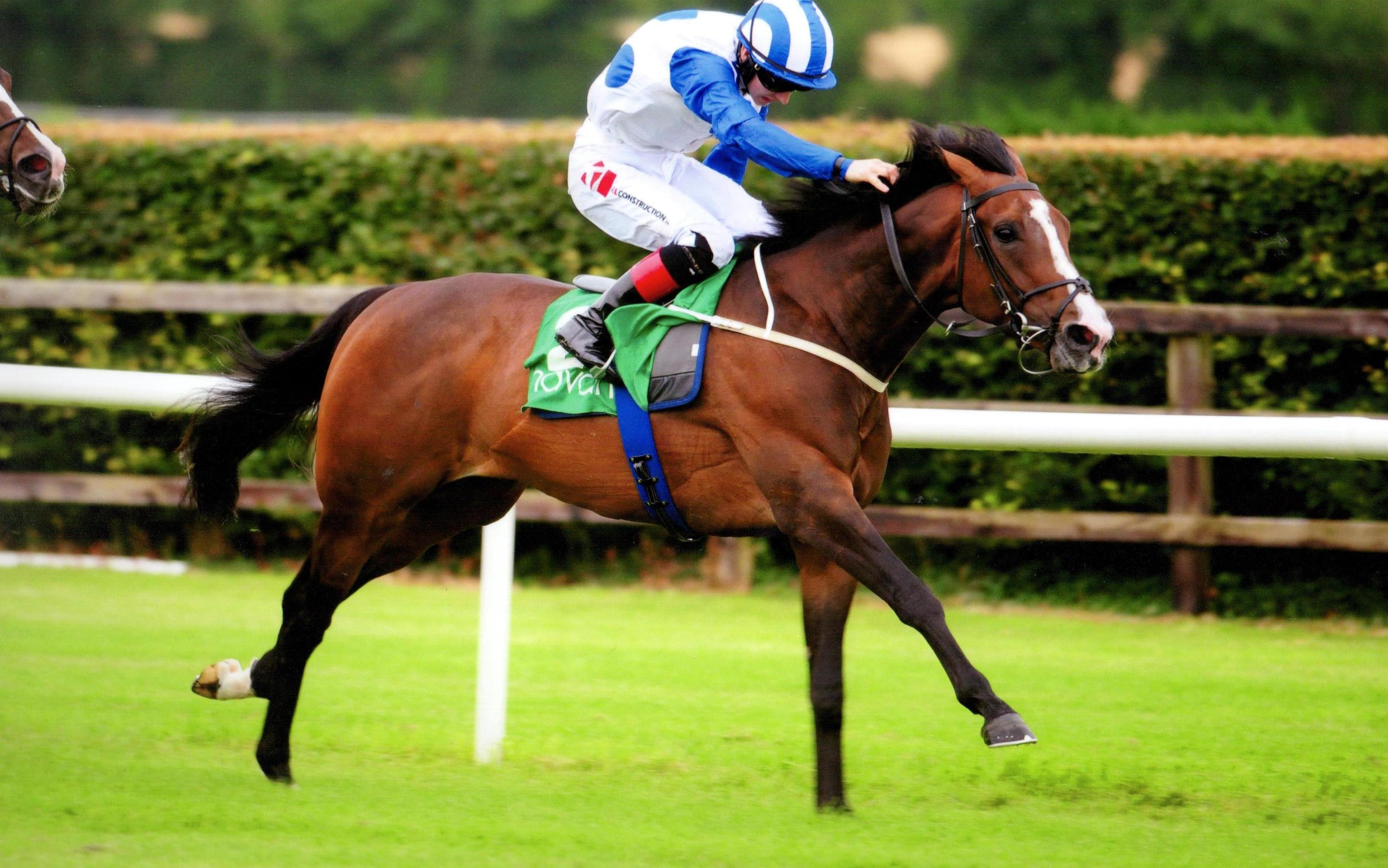 BUFFALO BLUES ridden to victory by Colin Keane at Navan 14th July 2017