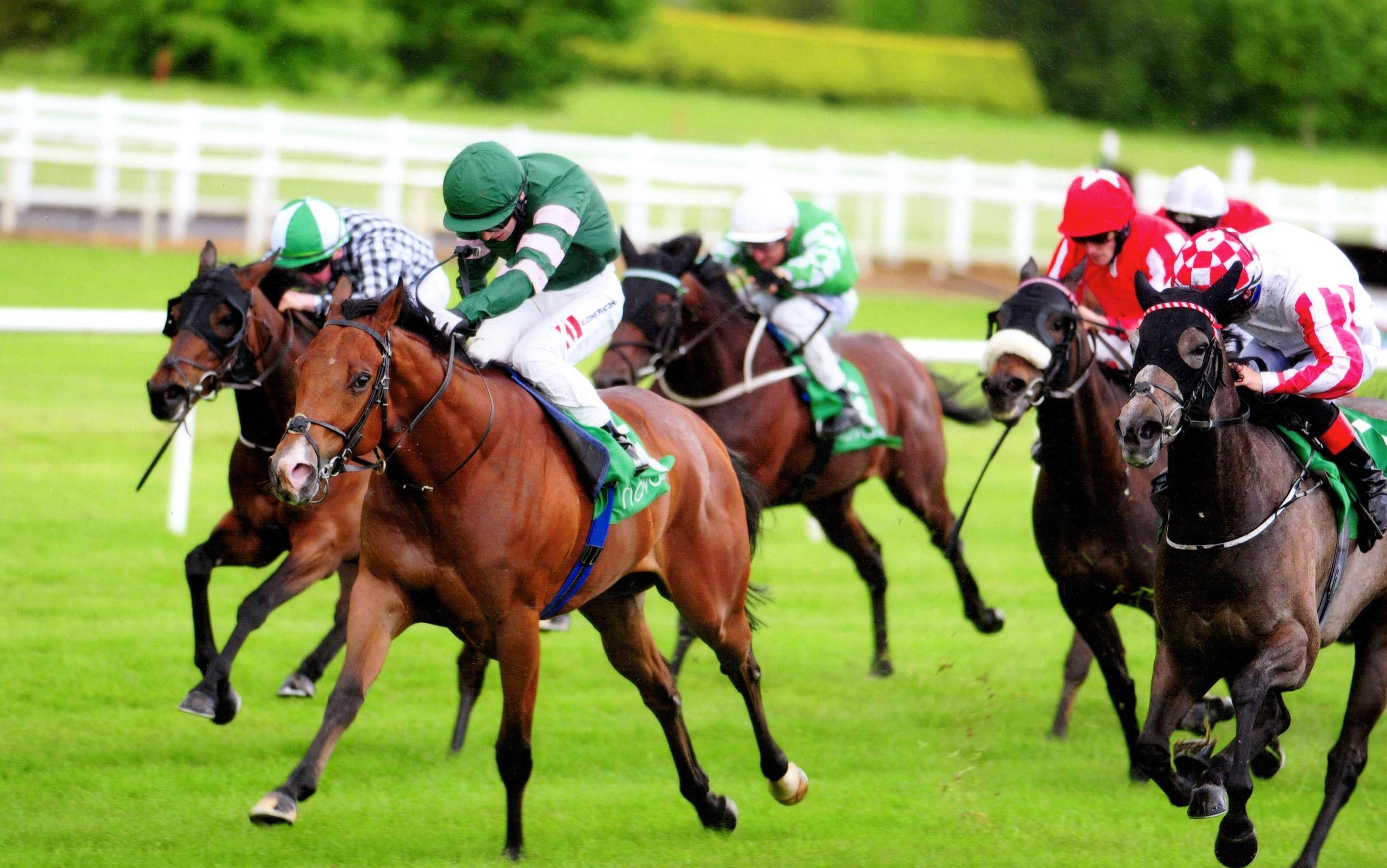CELEBRATION wins first time for Gaelic Thoroughbreds at Navan 20th May 2017