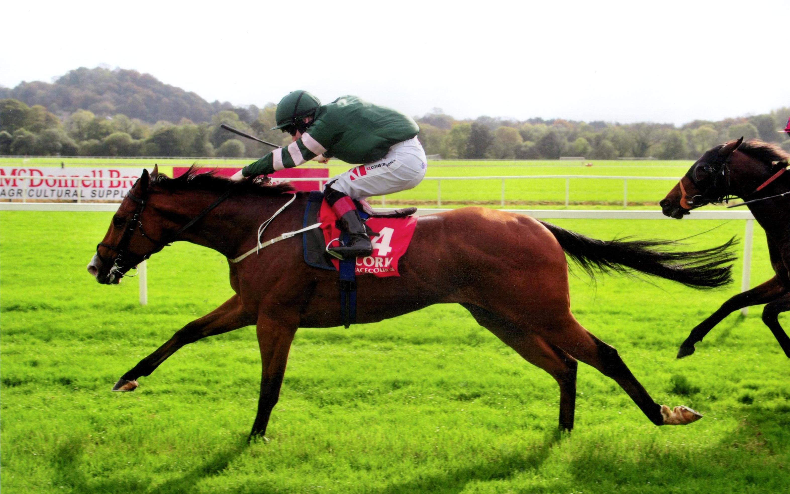 CELEBRATION wins in impressive style at Cork 14th October 2017