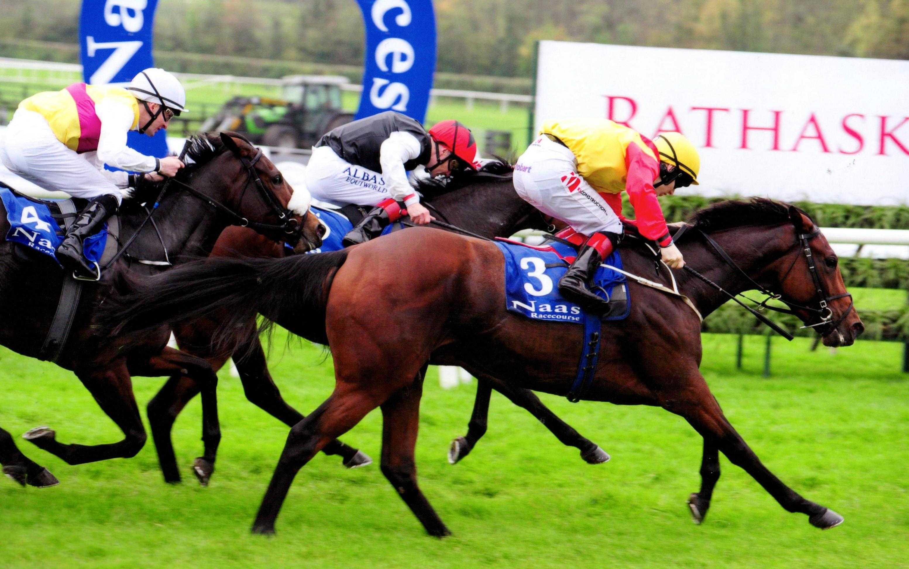 ELEGANT POSE battles to the line to bring up a treble on the card at Naas 15th October 2017