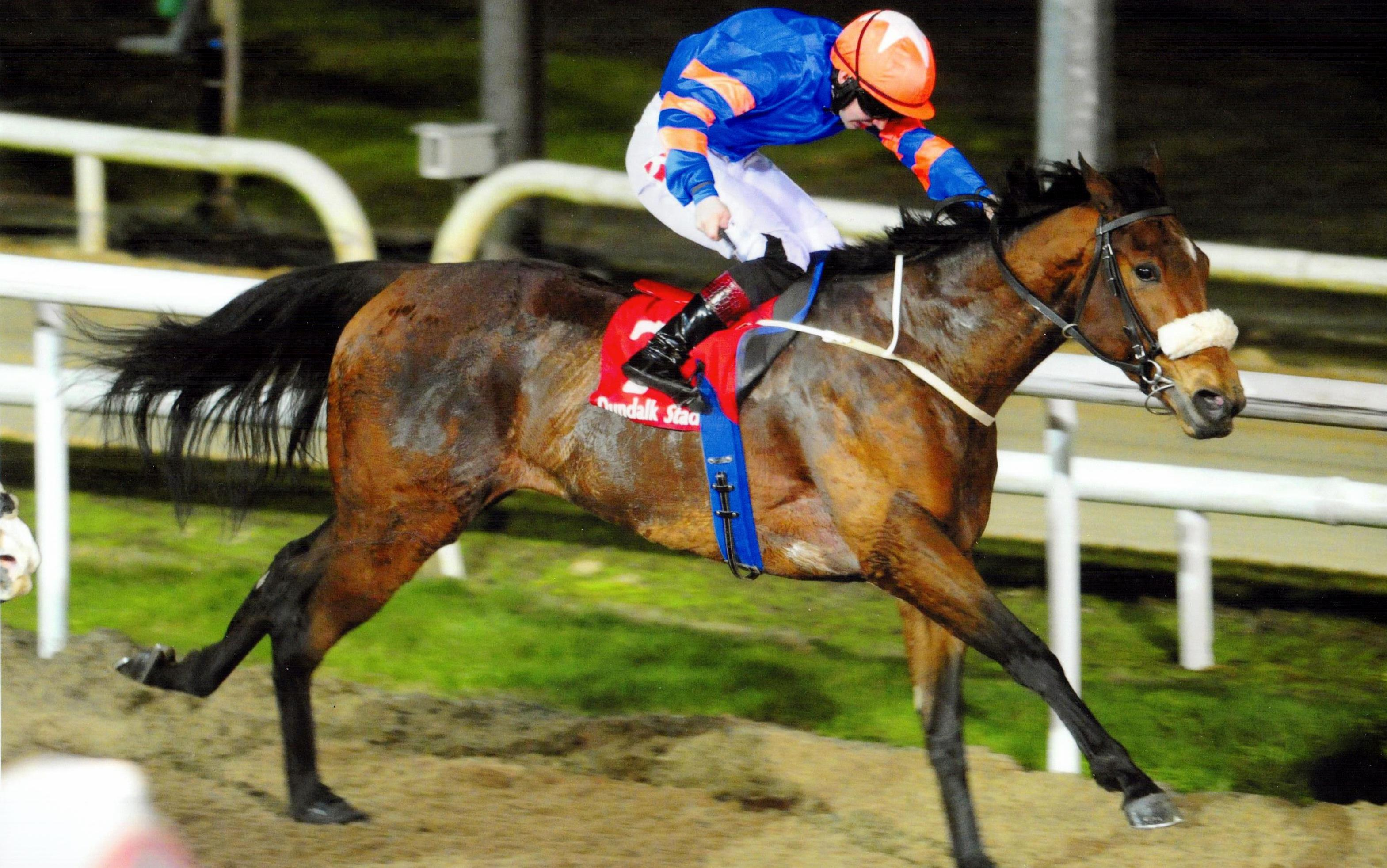 ELLARIA sheds her maiden tag at Dundalk under Colin Keane 20th January 2017