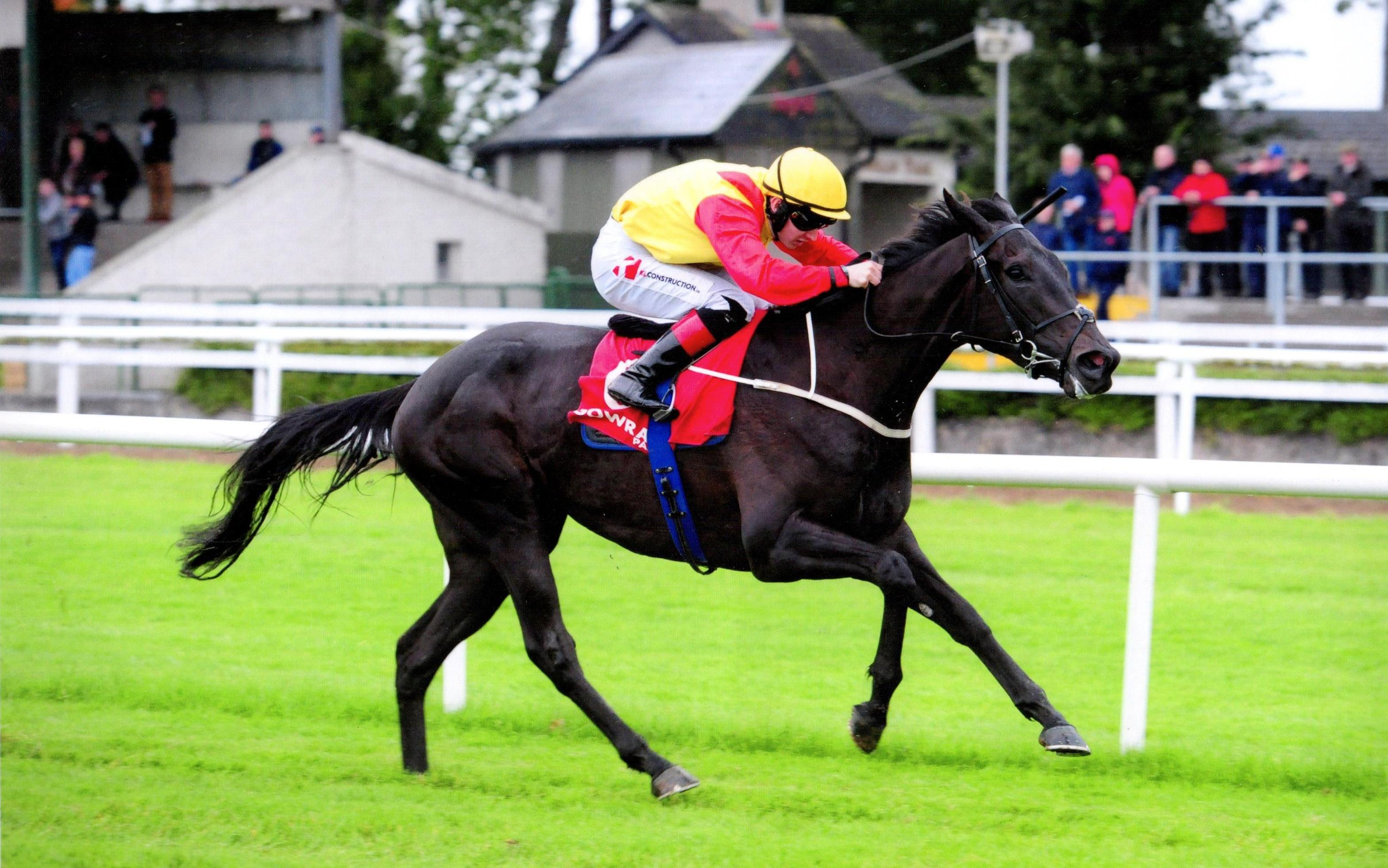 ERRATC PATH wins his maiden in fine style at Gowran Park 16th September 2017