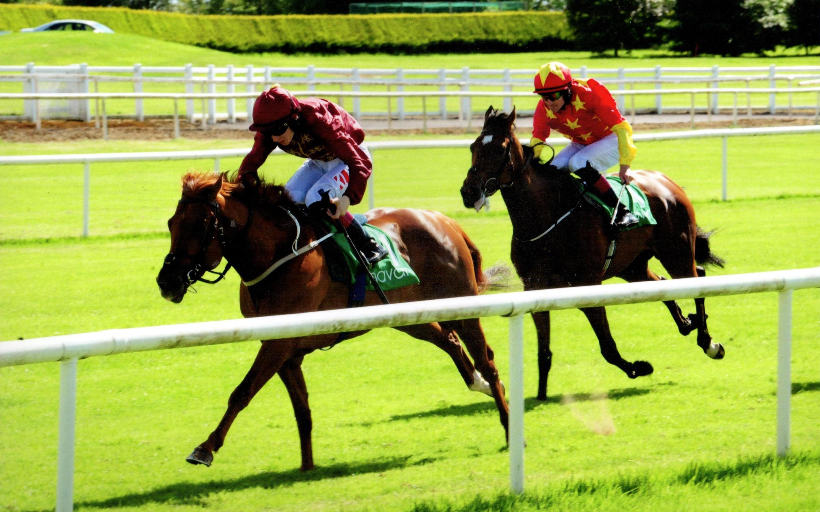 GOLD SPINNER brings up a double for the team at Navan 3rd June 2017