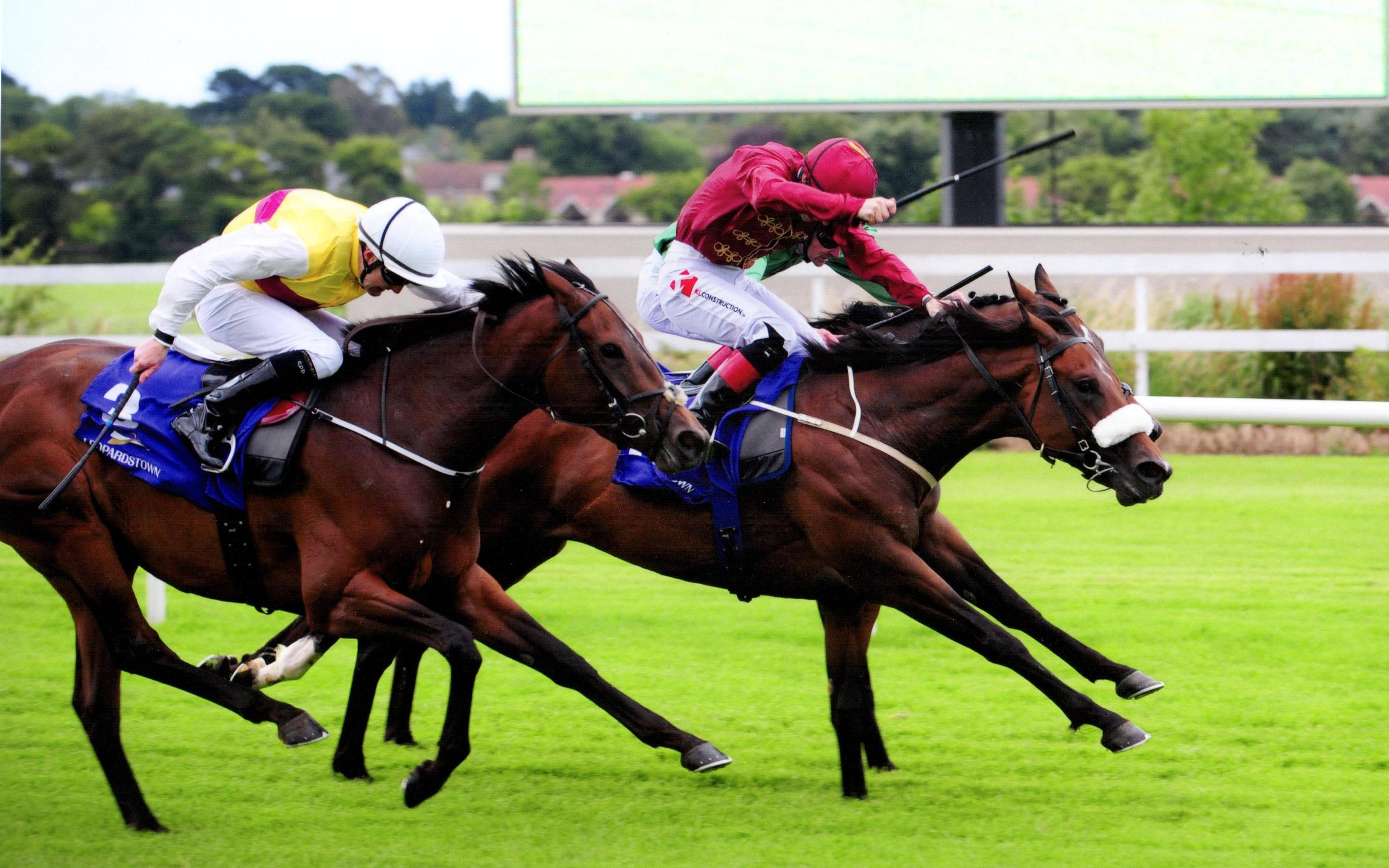 LIGHTENING FAST bounces back at Leopardstown 13th July 2017