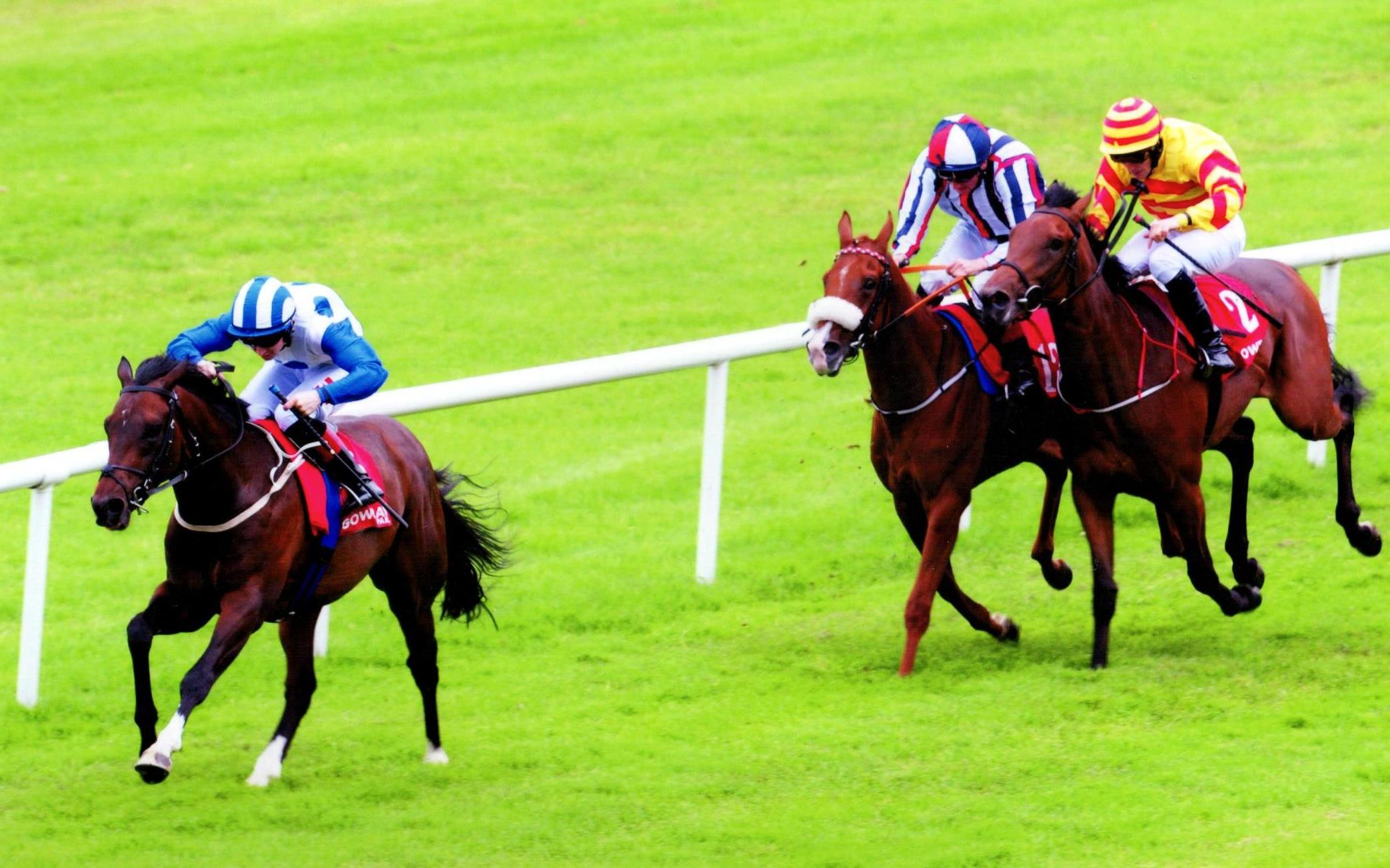 MASUCCI winning his maiden in fine style at Gowran Park 4th July 2017