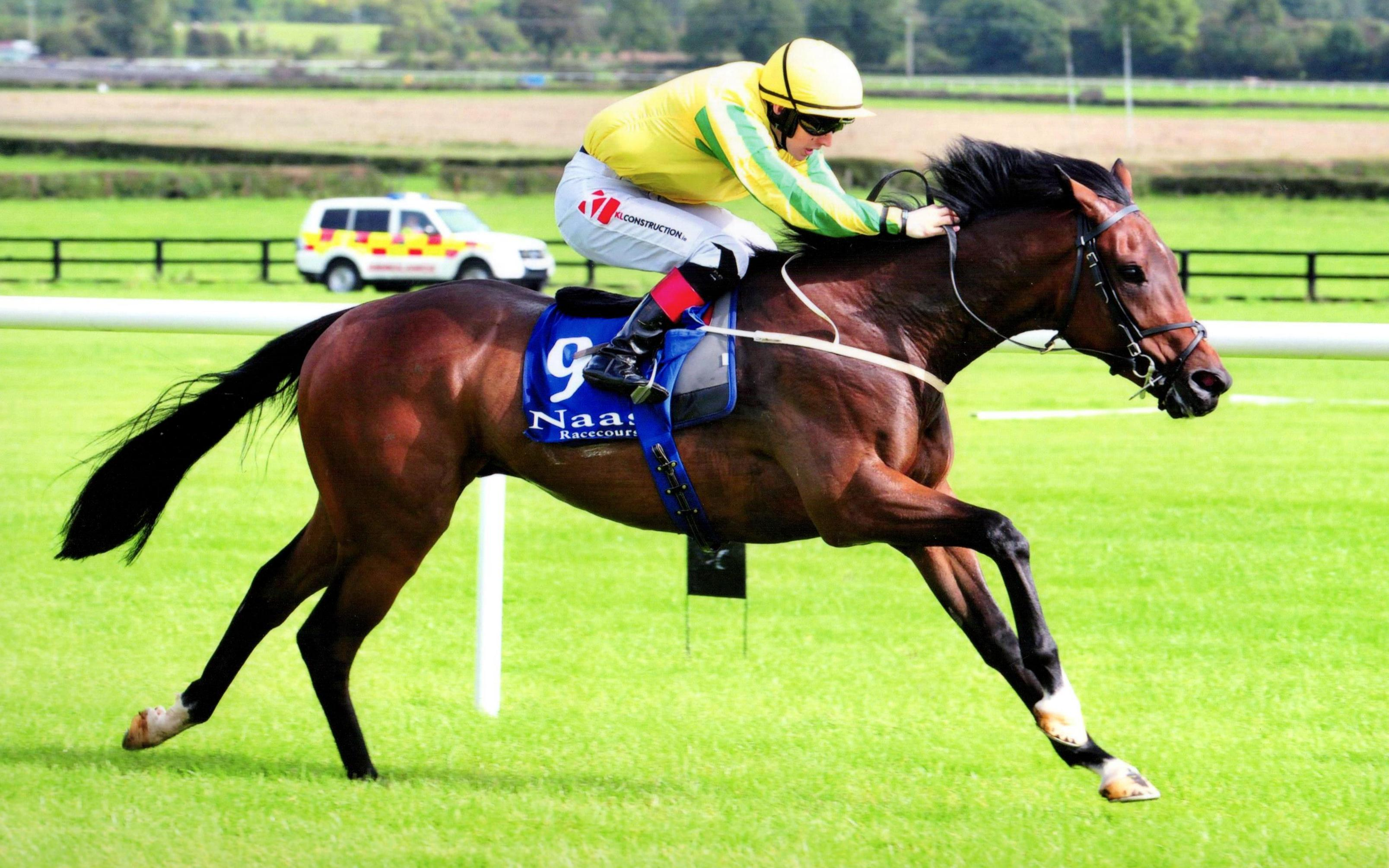 MCMUNIGAL runs out an impressive winner at Naas 24th September 2017