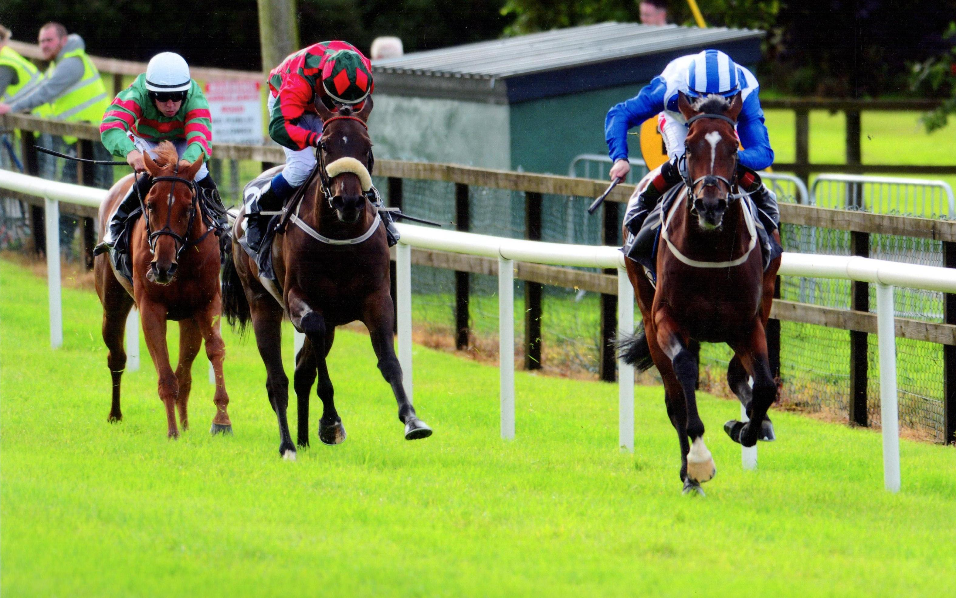 POETIC LIGHT gets his head in front to win his maiden at Bellewstown 30th August 2017