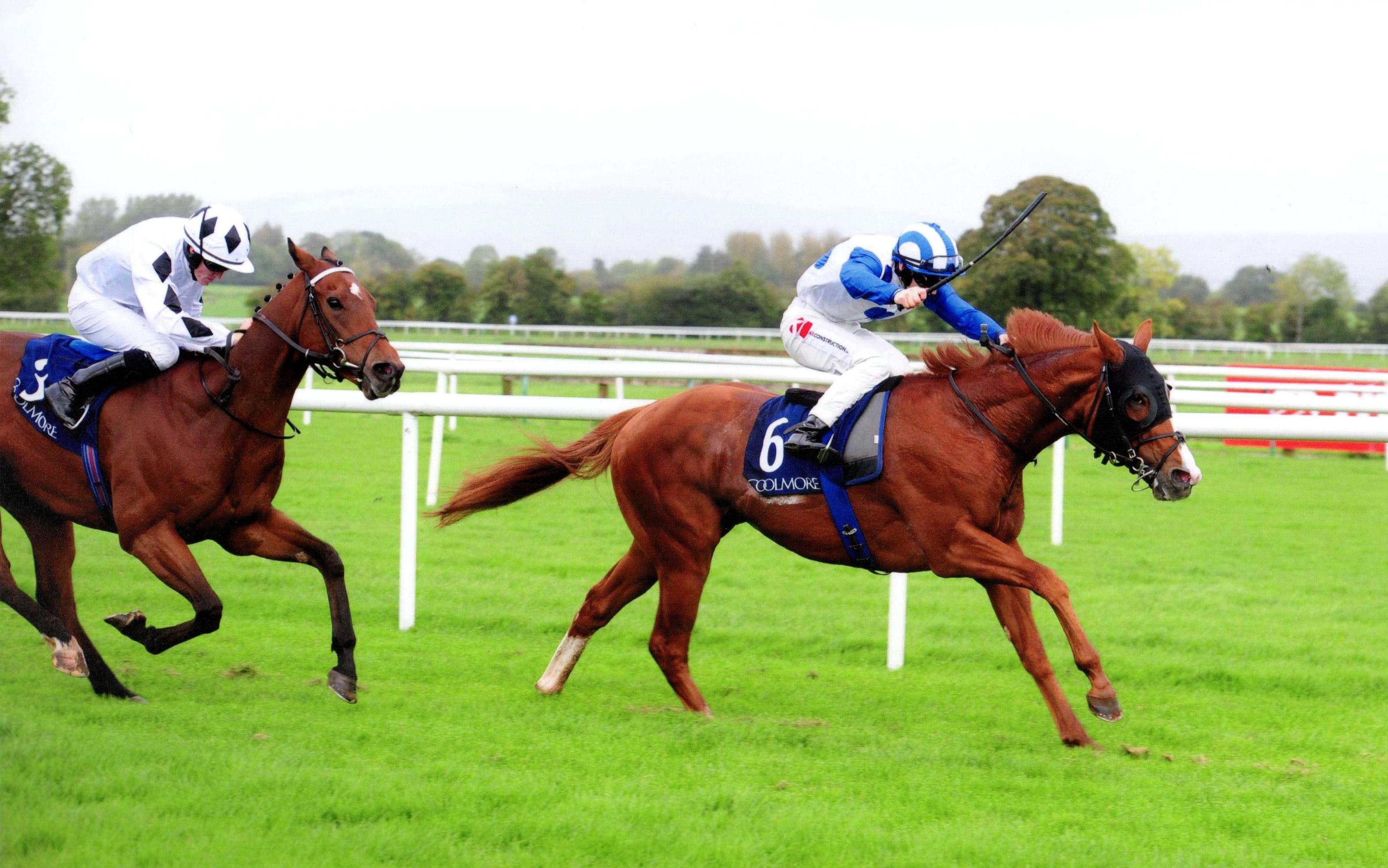 PSYCHEDELIC FUNK earns Group 3 success at Tipperary 1st October 2017