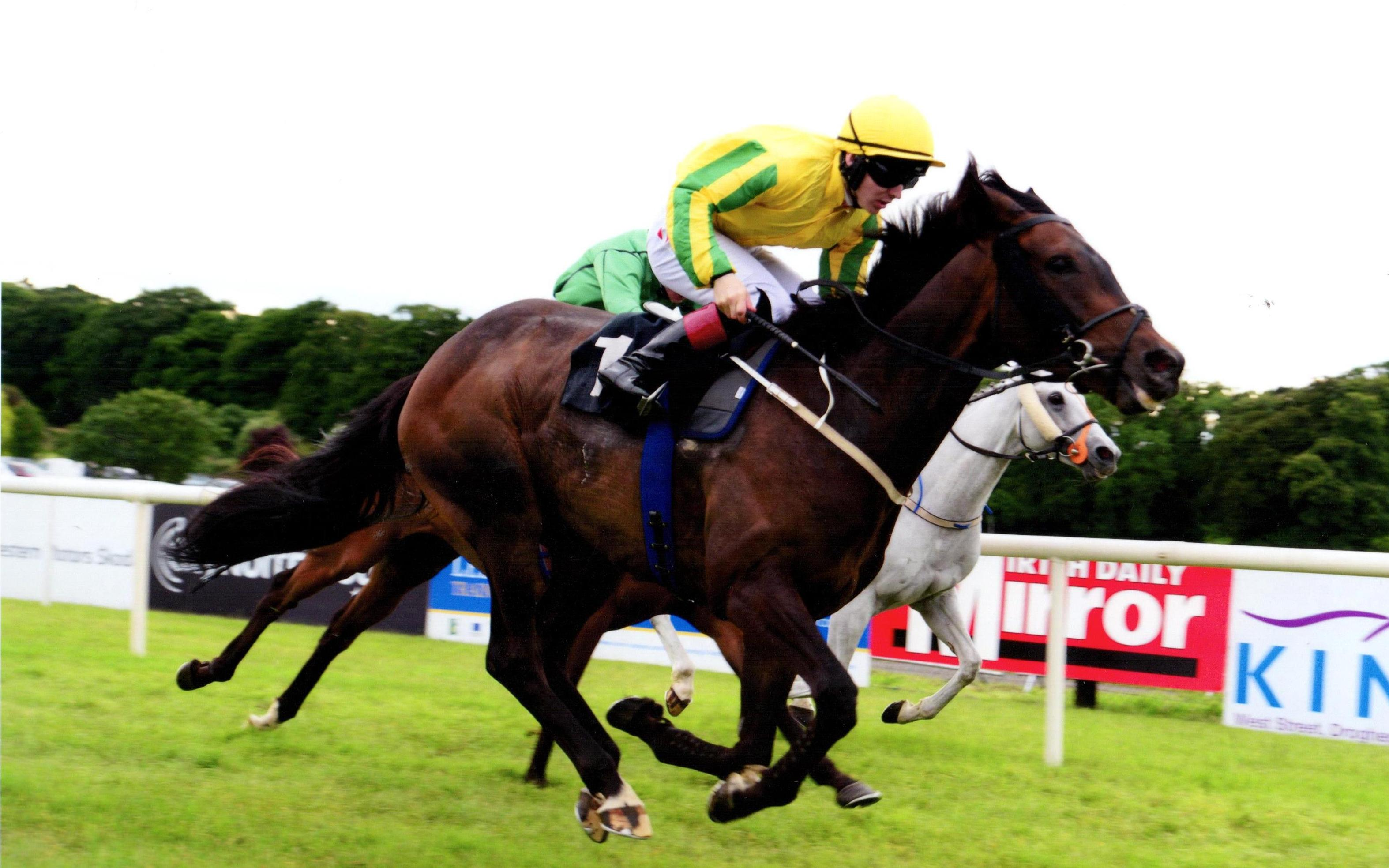 SONG OF NAMIBIA provides connections with another win at Bellewstown 6th July 2017