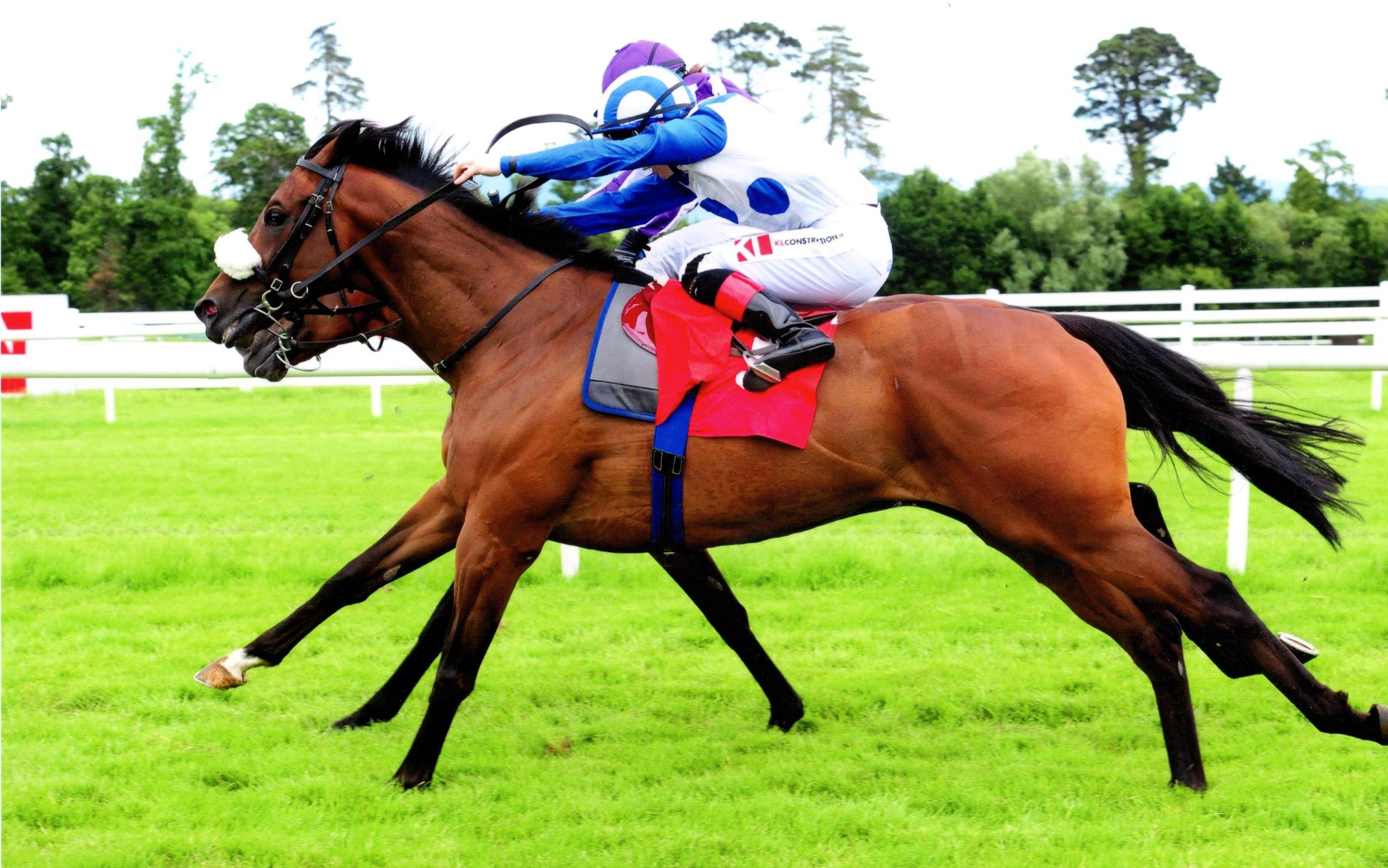 TENNESSEE WILDCAT notches up another victory at Gowran 18th June 2017