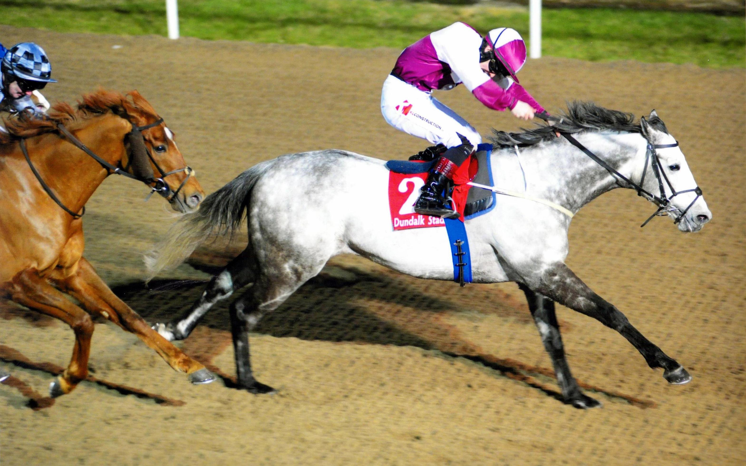 TOCCATA BLUE makes it a lucky Friday 13th at Dundalk 13th Janua
