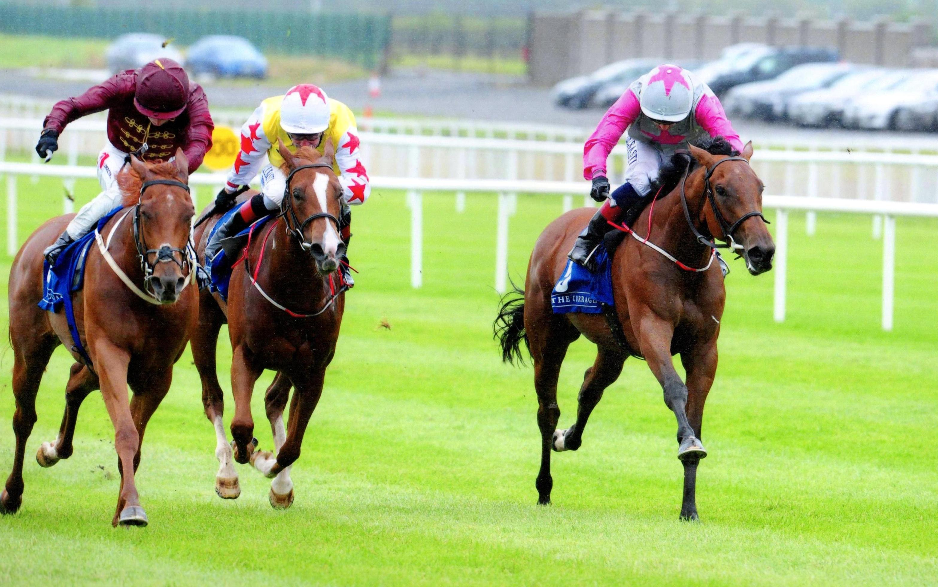 TREASURING lands valuable blacktype at The Curragh 20th August 2017