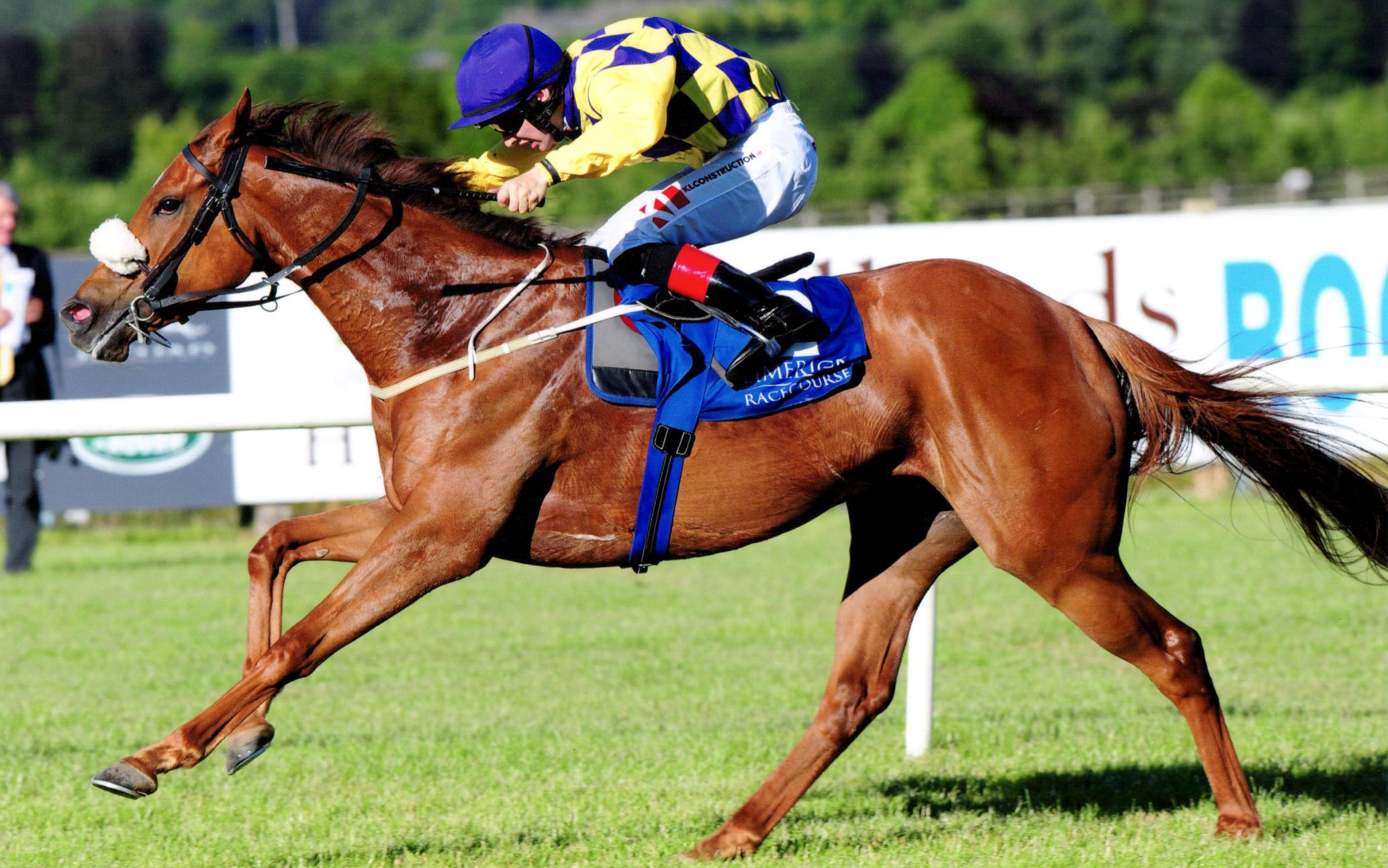 ARTISTIC MELODY forges ahead of her rivals at Limerick, 22nd June 2018