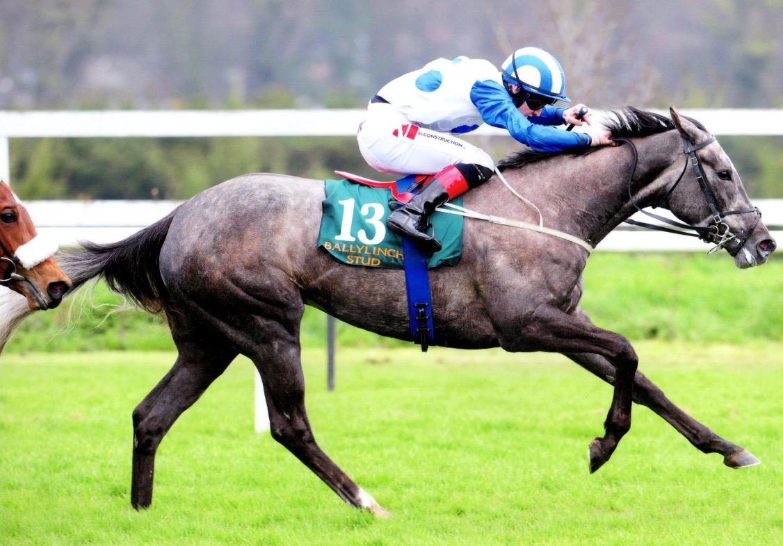 WHO'S STEPH wins the Ballylinch Stud 2,000 Guineas Trial (Gr3) at Leopardstown, 14th April 2018