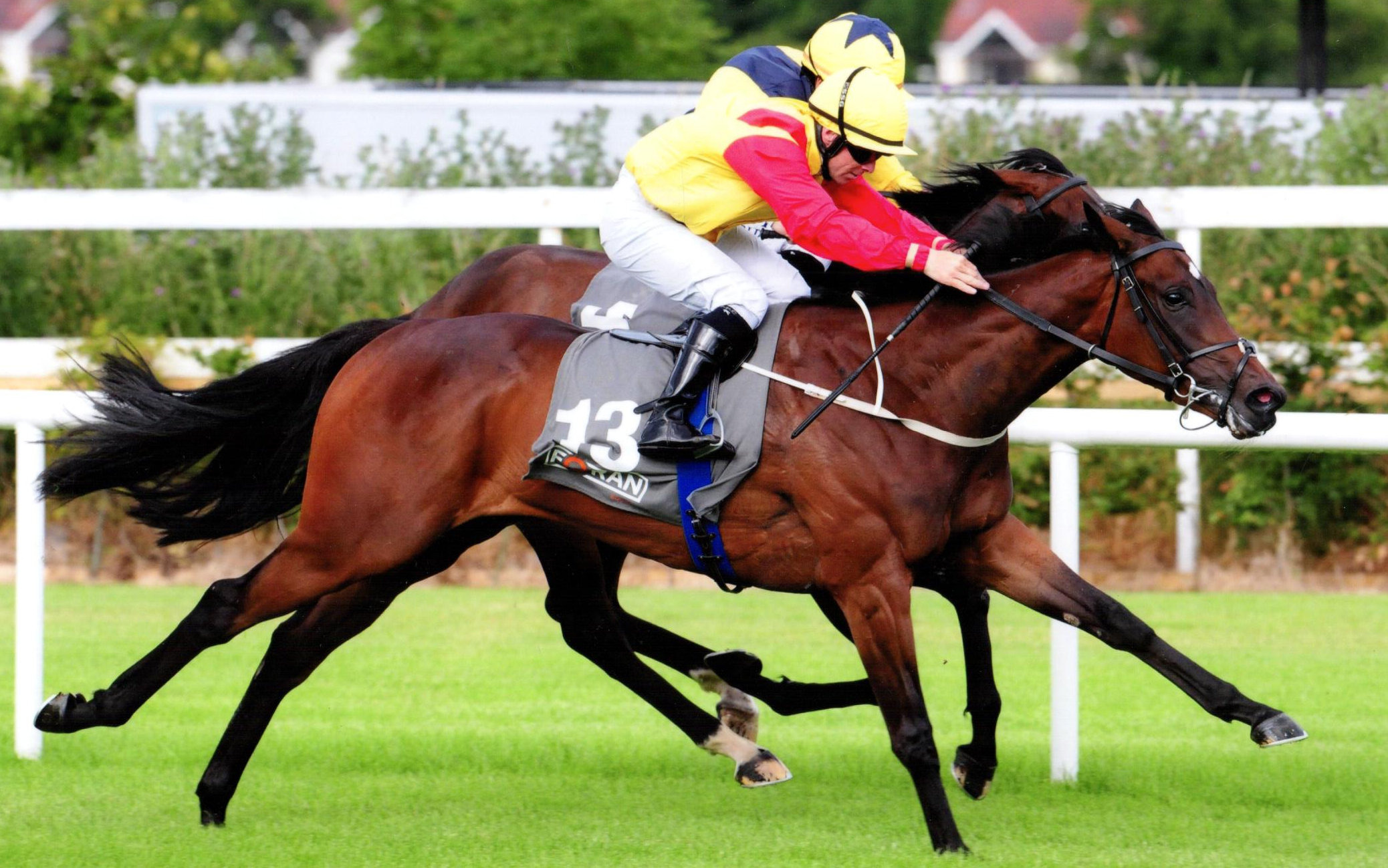 BRUNELLE & Wayne Lordan land the Foran Equine Irish EBF M'dn at Leopardstown, 18th July 2019