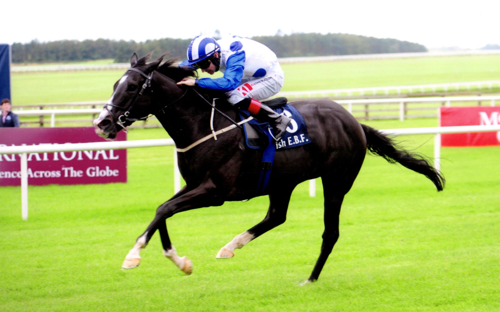 BUFFER ZONE adds the valuable Bold Lad Sprint H'Cap to his CV at The Curragh, 15th September 2019