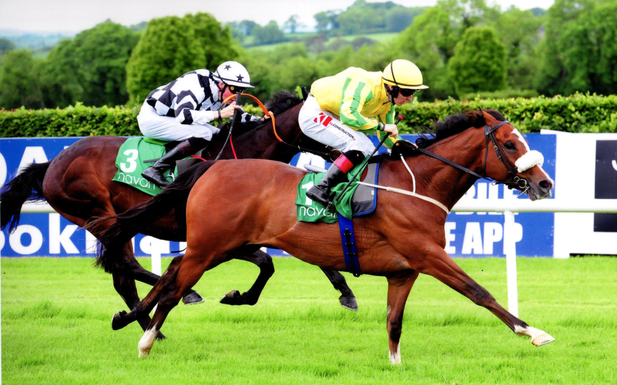 INSCRIBE, in the colours of David Spratt toughs it out over 1m5f at Navan, 1st June 2019