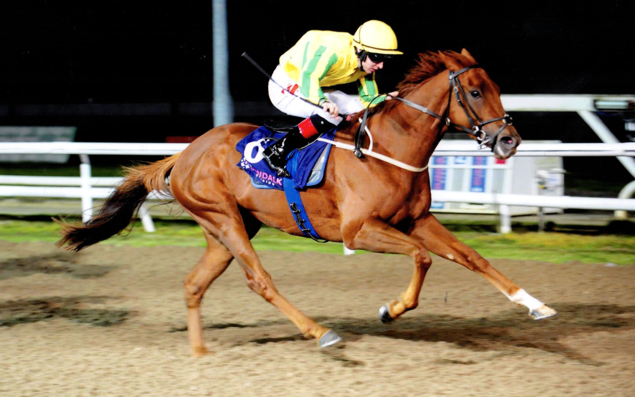 KAFU is a comfortable winner over a mile at Dundalk, 30th October 2019