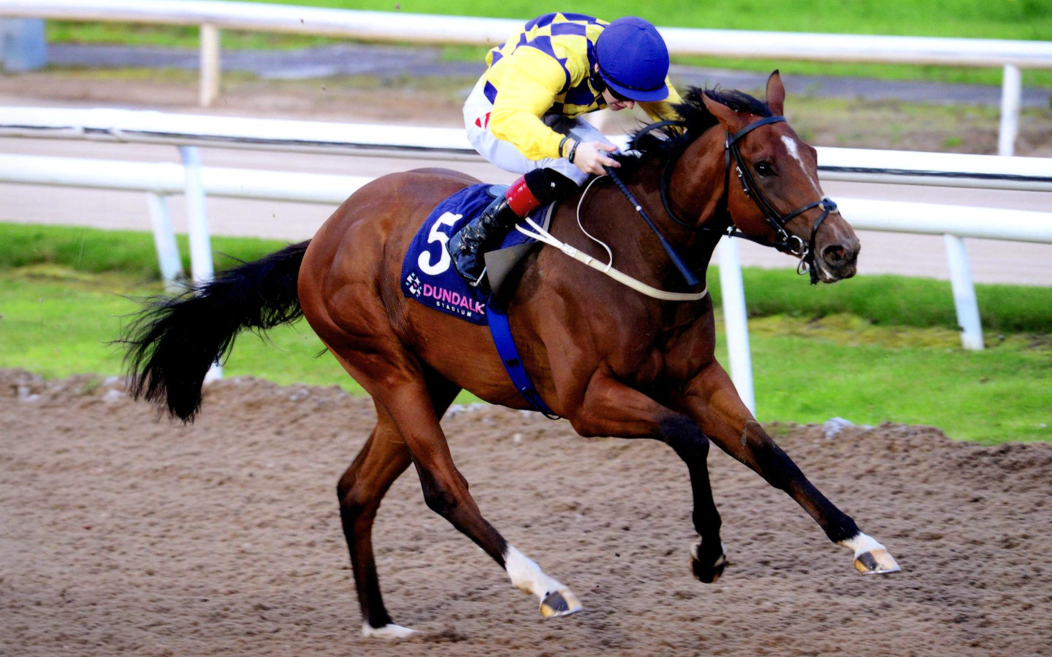 LEADERSHIP RACE lengthens for home over 7 furlongs at Dundalk, 4th Oct 2019