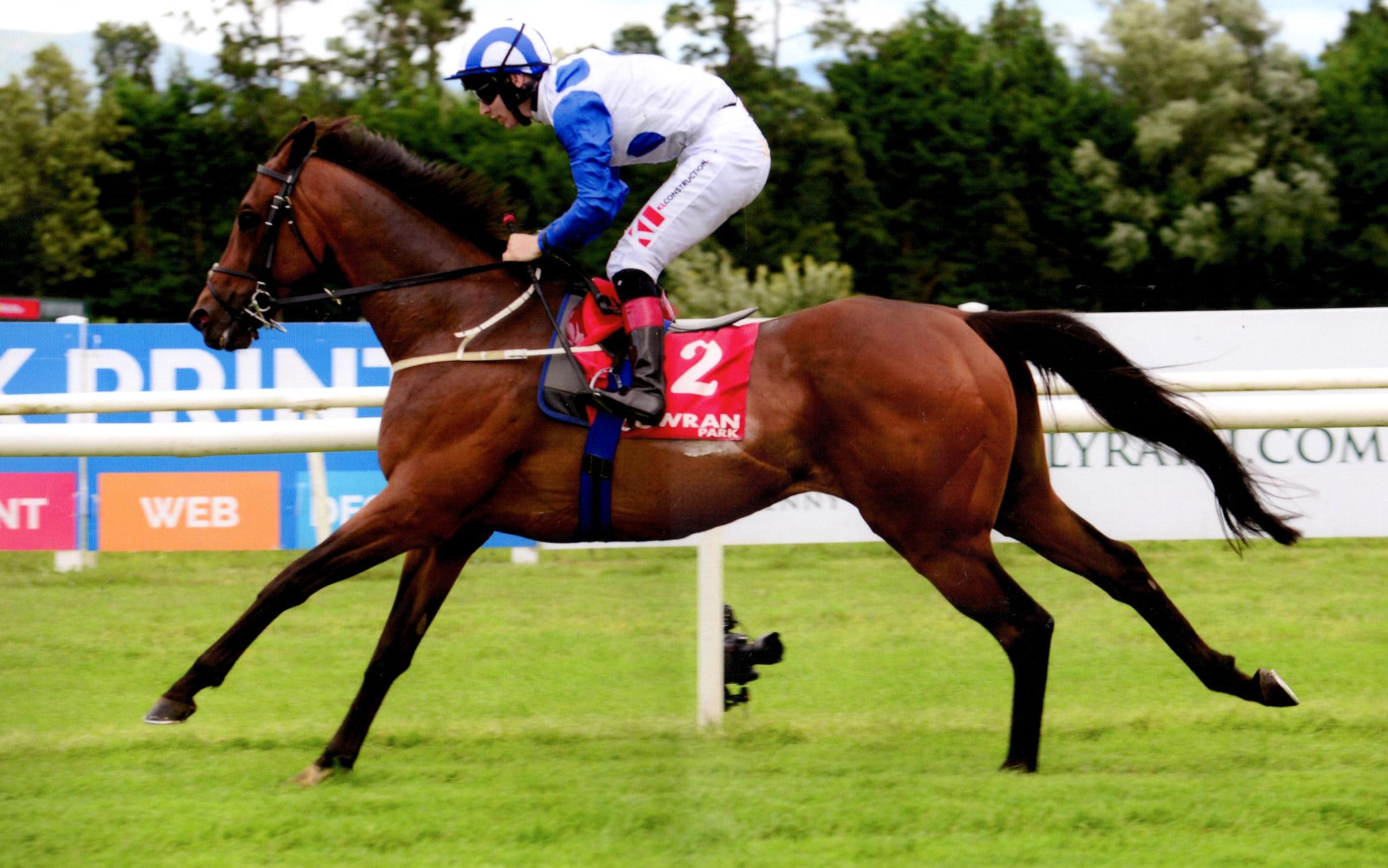 TENNESSEE WILDCAT gets the job done at Gowran Park, 14th August 2019